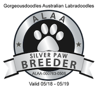 We are a certified IALA 'Silver Paw' breeder.