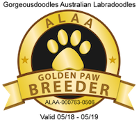 We are a certified IALA 'Gold Paw' breeder.