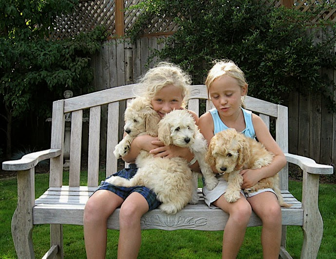 Nieces on a bench