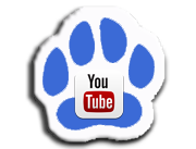 GorgeousDoodles YouTube